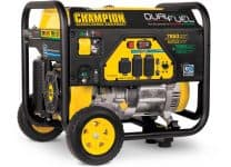 Picture of the Champion 100592
